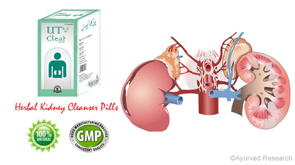 Herbal Kidney Cleanser Pills Supplements